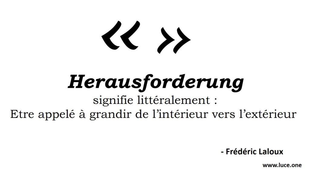 Défi - Frédéric Laloux