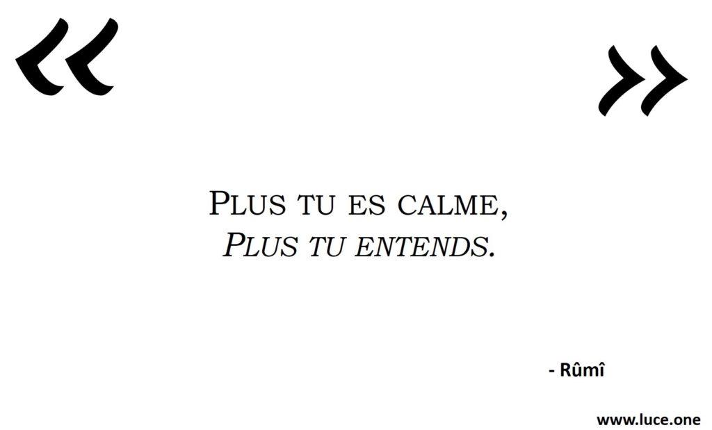 Plus tu es calme Rumi