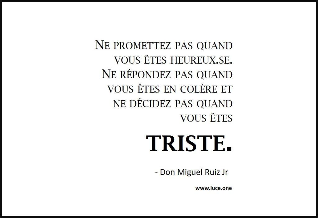 Ne promettez pas - Don Miguel Ruiz Jr